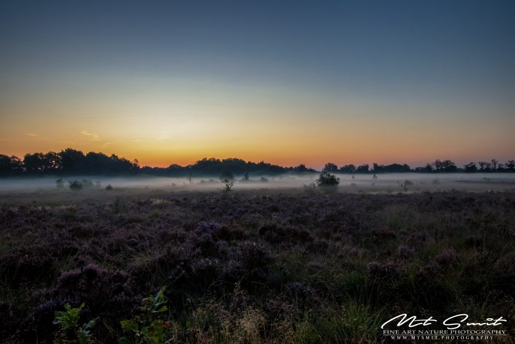 Sunrise above Balloerveld
